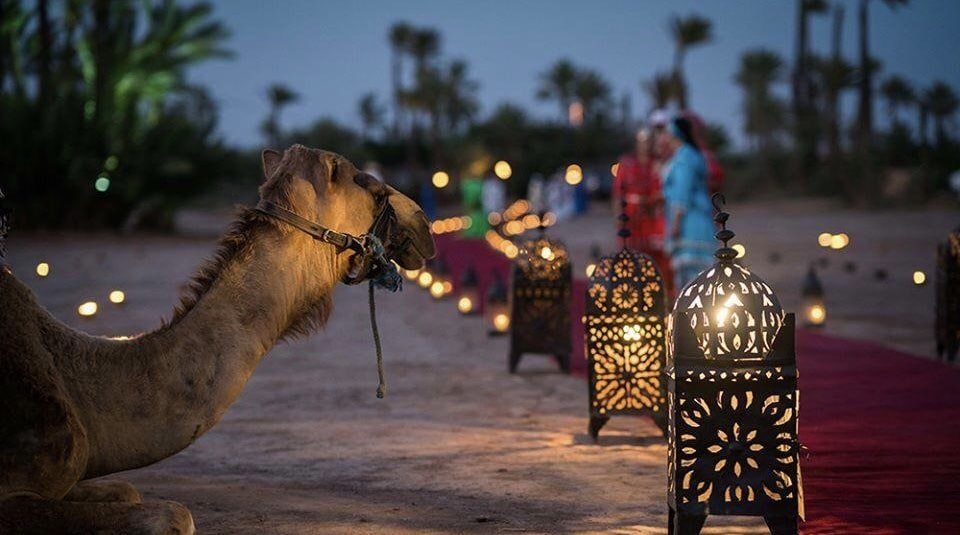Stunning Marrakech Weddings: Exotic Charm